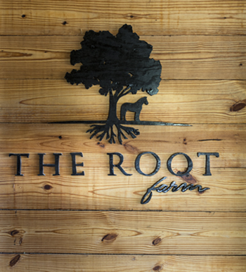 The Root Farm