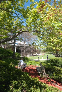 Garden on the UC Campus