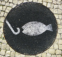 Image of fish looking at a hook