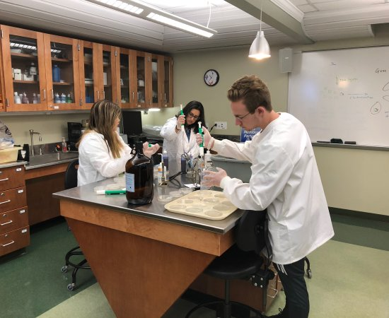 Jennifer Liu - Sarah Mirza and Evan Vescio work on UC bacteria