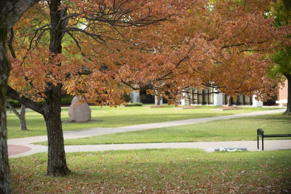 Campus Scenic - Fall 2015-64 Courtyard