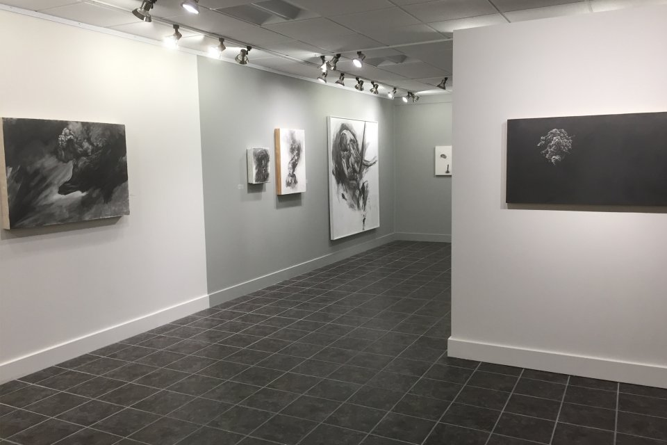 Carbon Impermanence - gallery exhibit